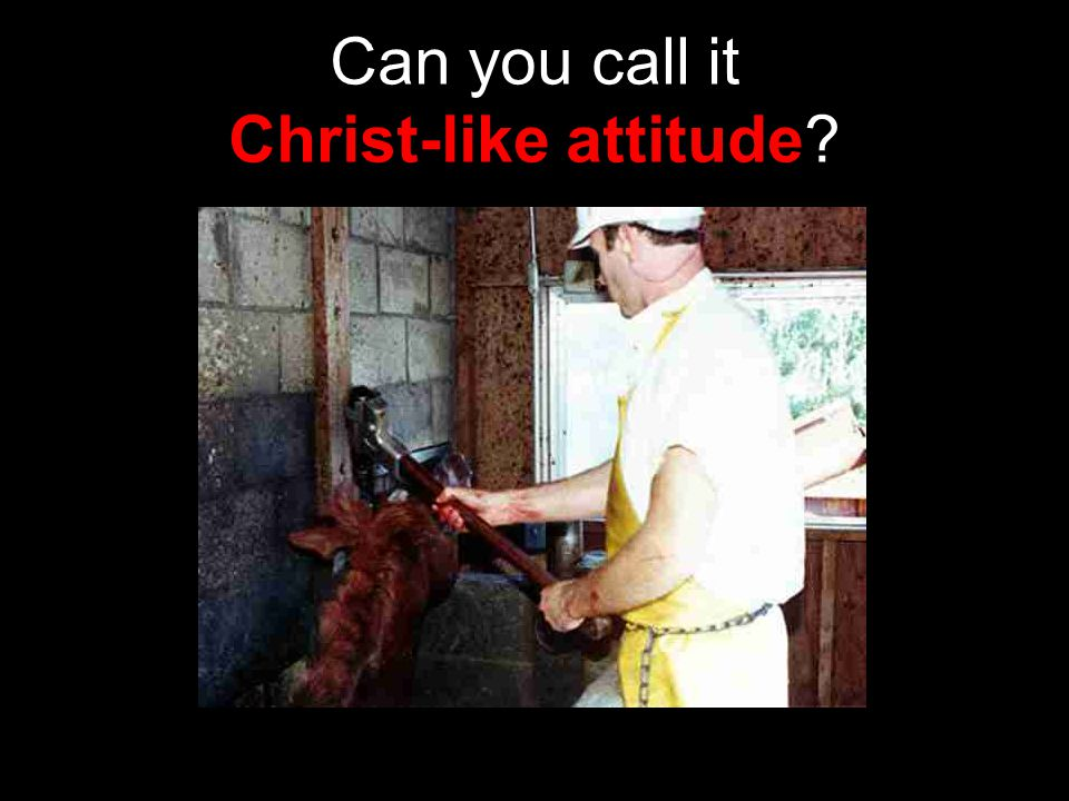 Can you call it Christ-like attitude