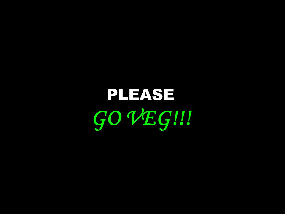 PLEASE GO VEG!!!