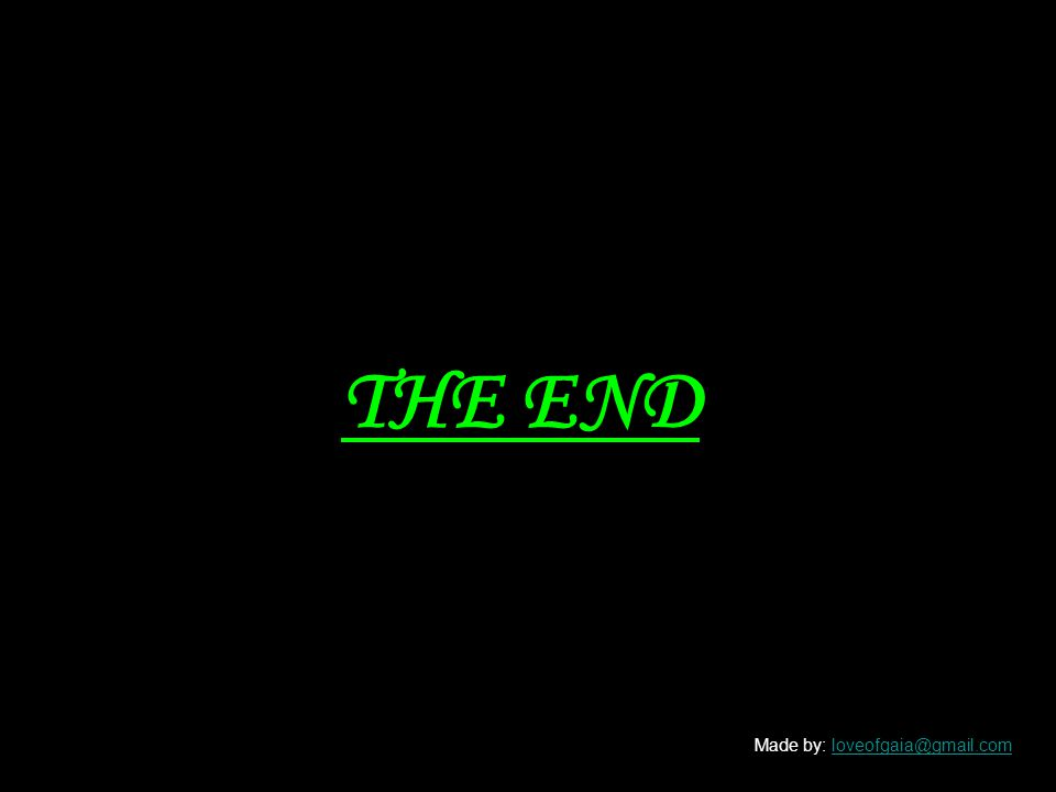 THE END Made by: