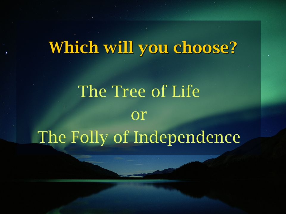 The Tree of Life or The Folly of Independence