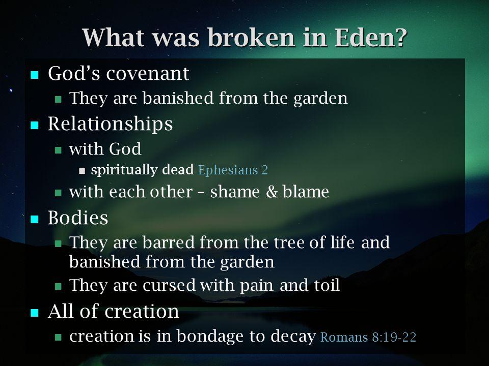 What was broken in Eden God's covenant Relationships Bodies