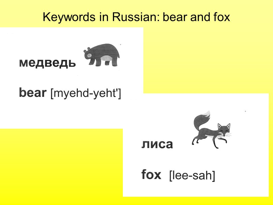 Keywords in Russian: bear and fox