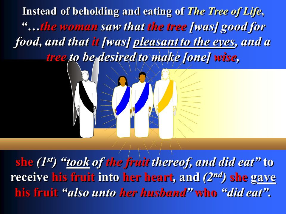 Instead of beholding and eating of The Tree of Life,