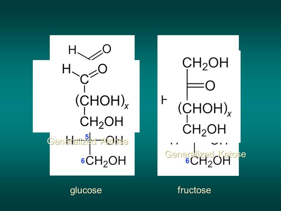 glucose fructose Generalized Ketose Generalized Aldose