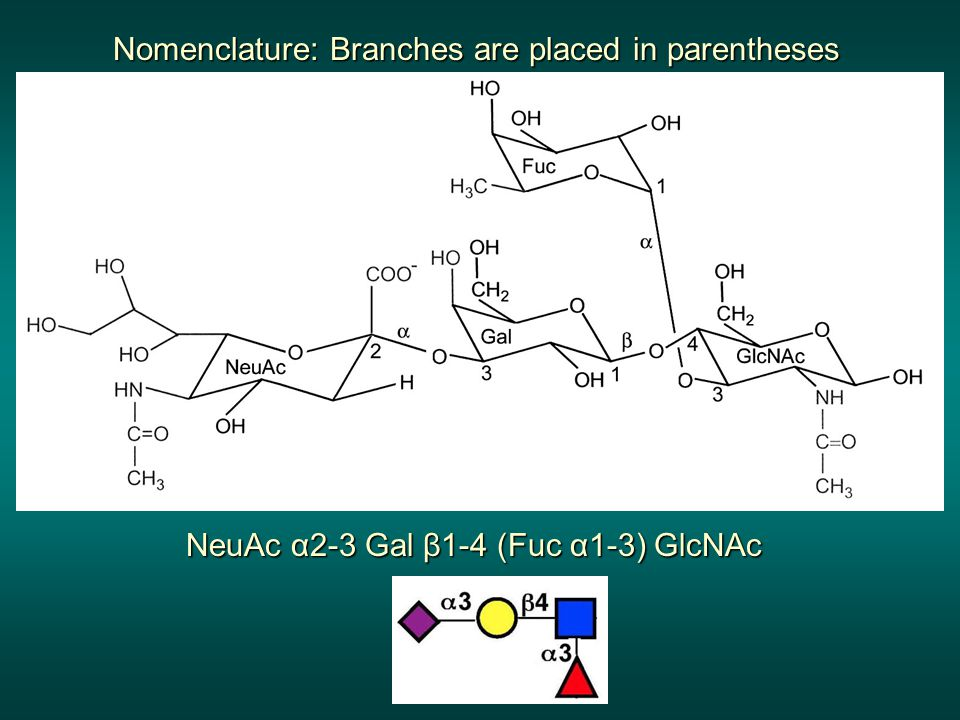 Nomenclature: Branches are placed in parentheses