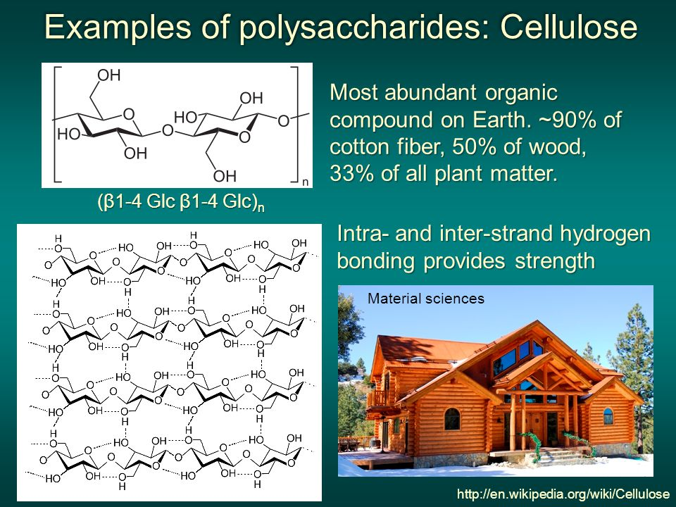 Examples of polysaccharides: Cellulose