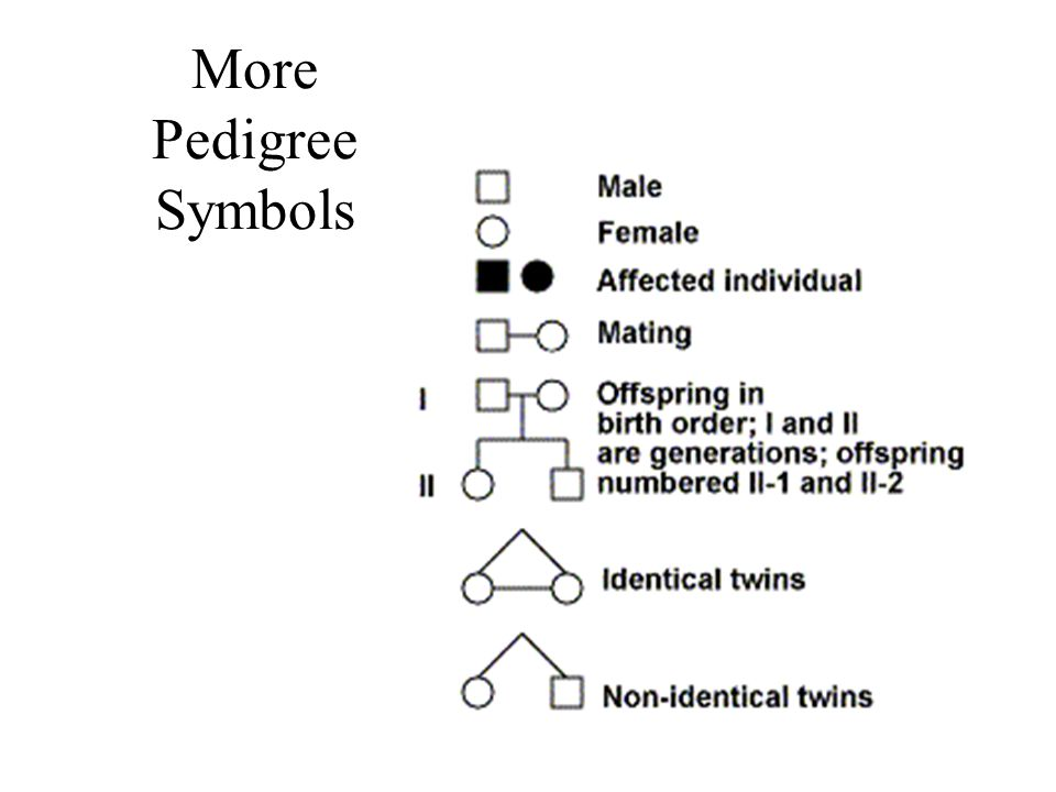 More Pedigree Symbols