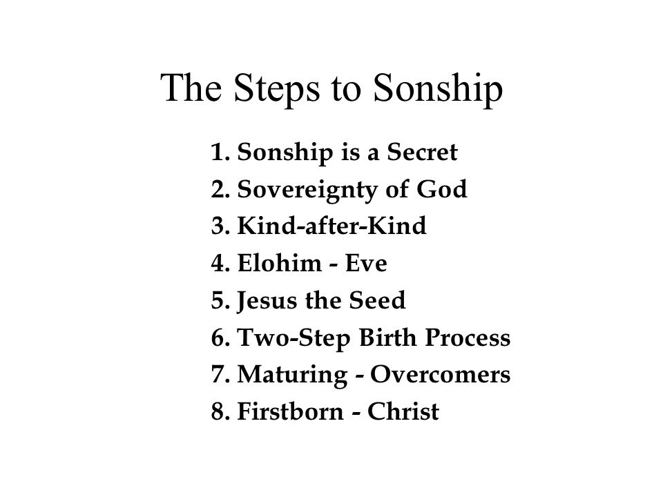 The Steps to Sonship 1. Sonship is a Secret 2. Sovereignty of God