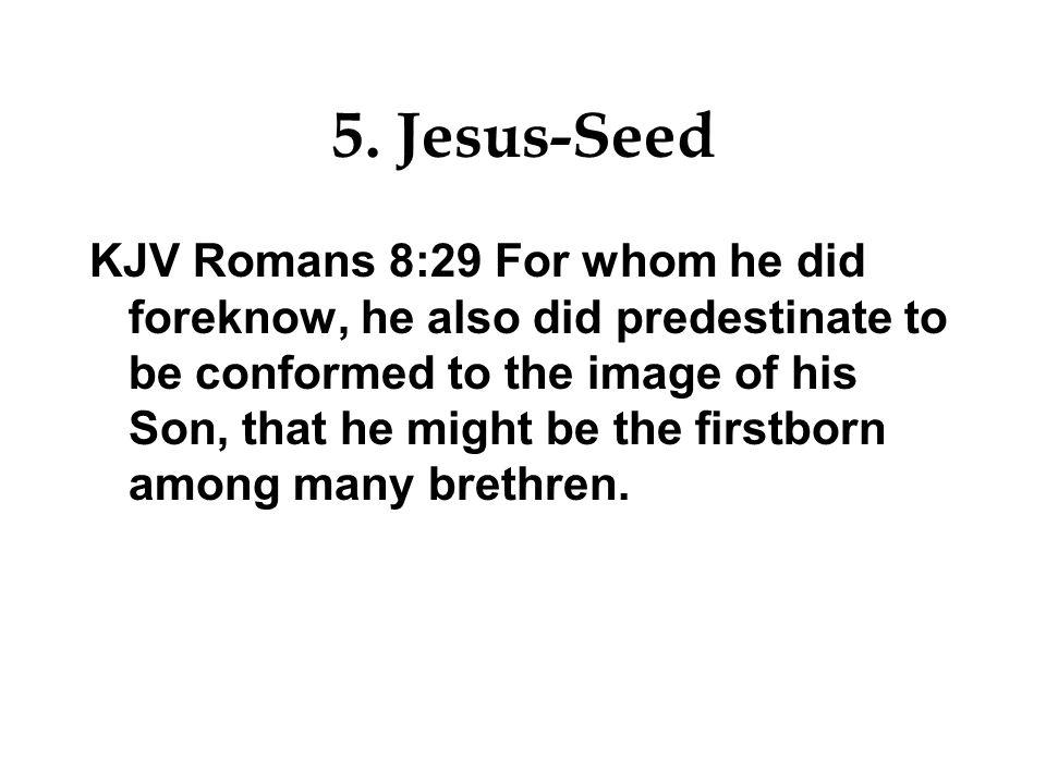 5. Jesus-Seed