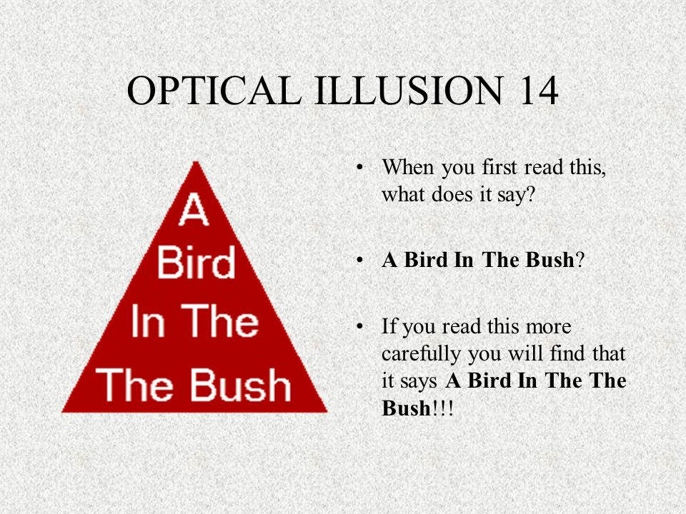 OPTICAL ILLUSION 14 When you first read this, what does it say