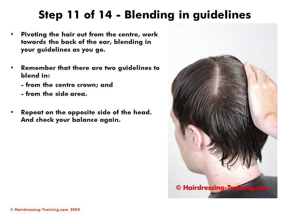 Step 11 of 14 - Blending in guidelines