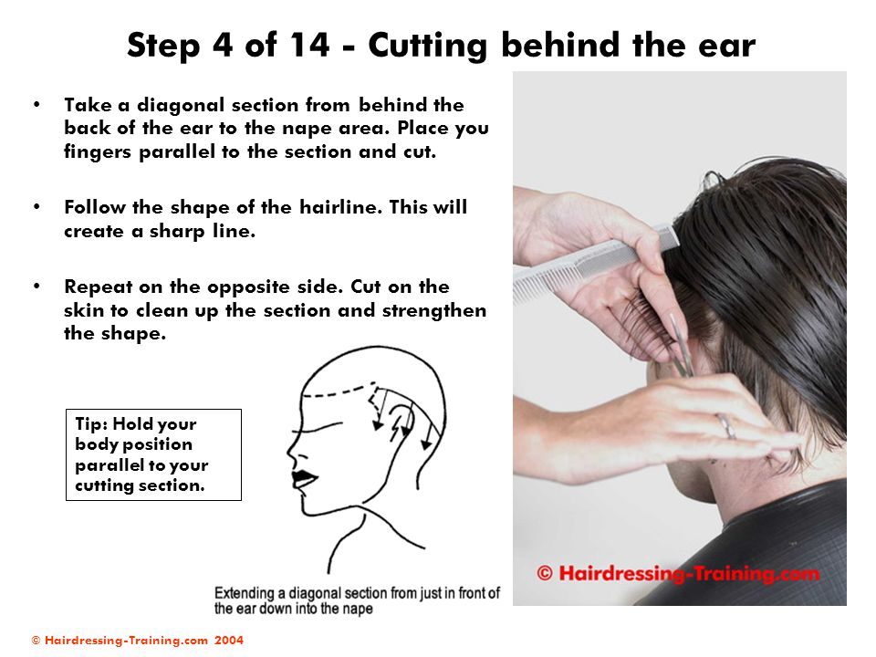 Step 4 of 14 - Cutting behind the ear