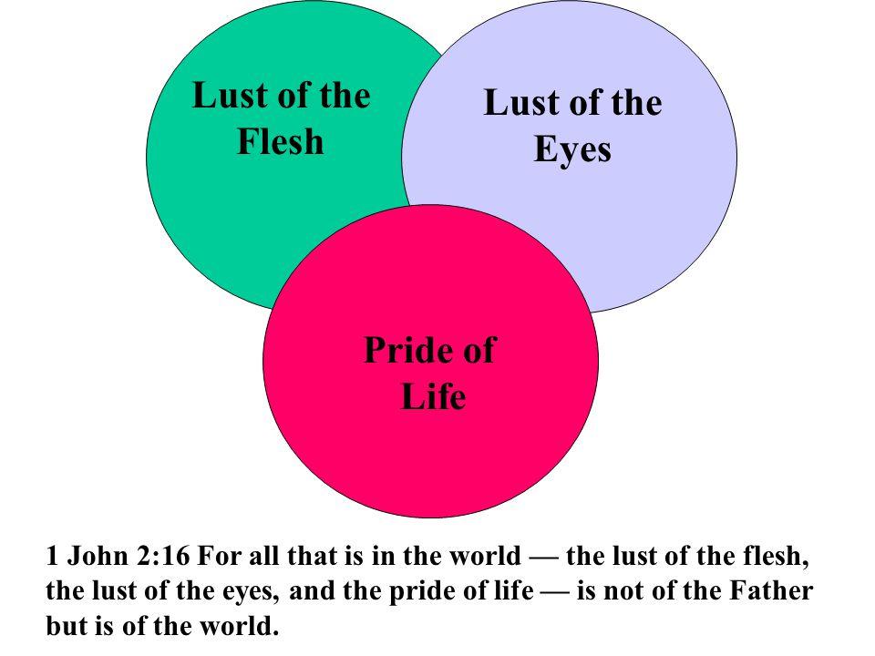 Lust of the Flesh Eyes Pride of Life