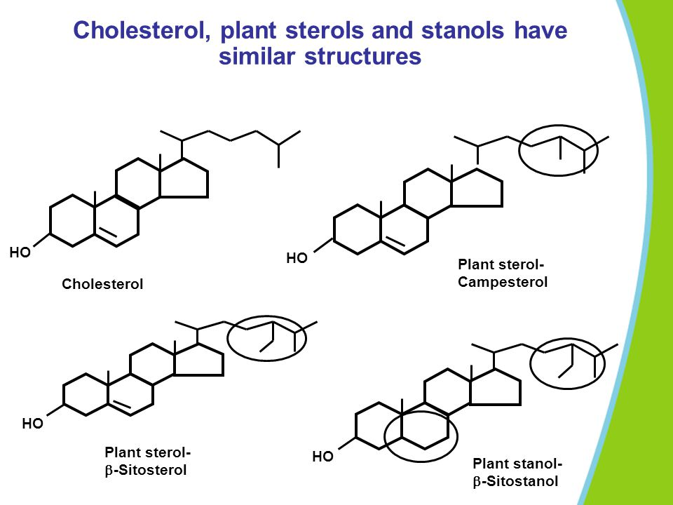 Cholesterol, plant sterols and stanols have similar structures