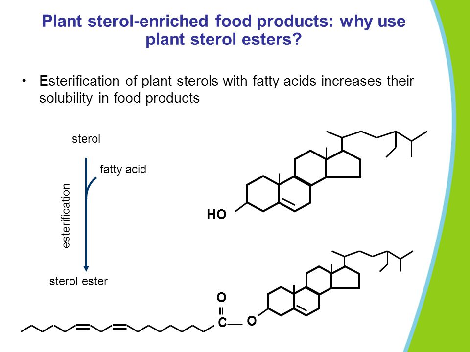 Plant sterol-enriched food products: why use plant sterol esters