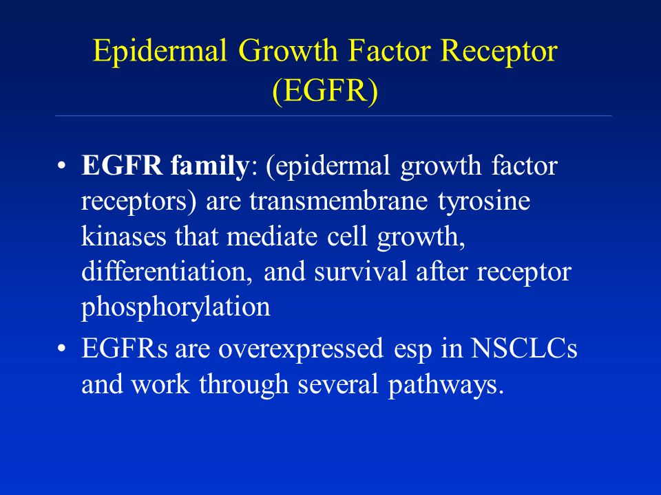 Epidermal Growth Factor Receptor (EGFR)