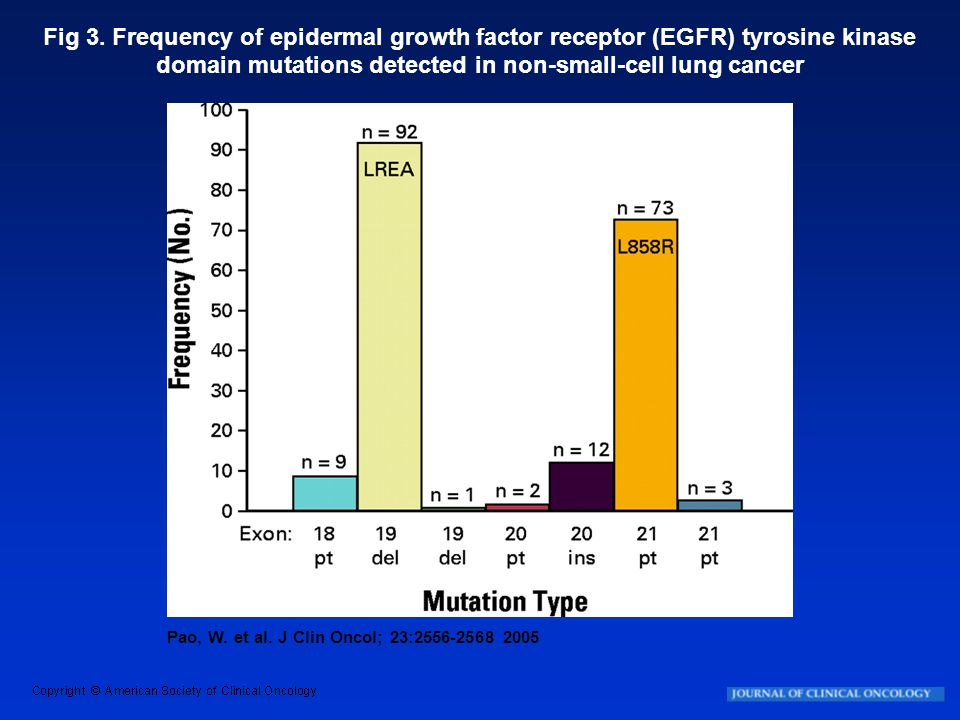 Fig 3. Frequency of epidermal growth factor receptor (EGFR) tyrosine kinase domain mutations detected in non-small-cell lung cancer