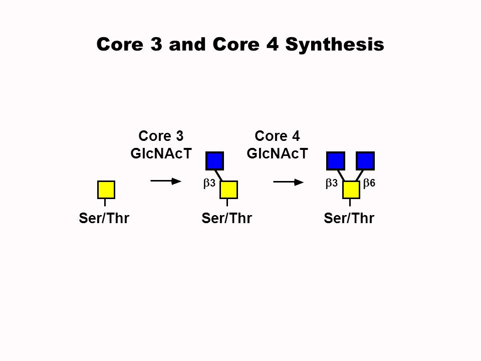 Core 3 and Core 4 Synthesis