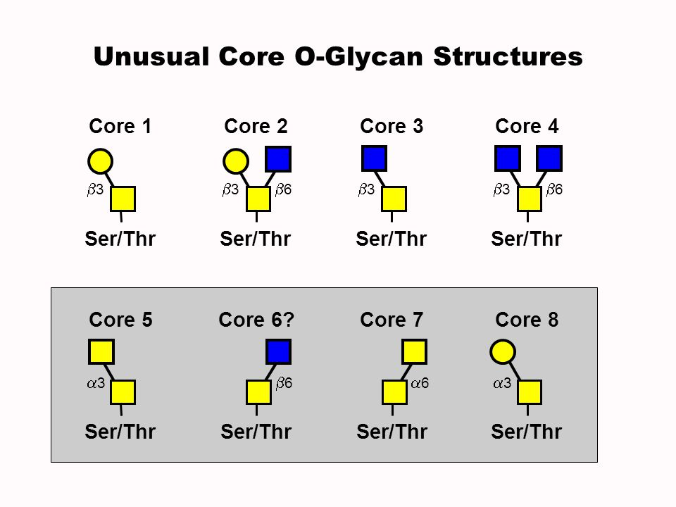 Unusual Core O-Glycan Structures