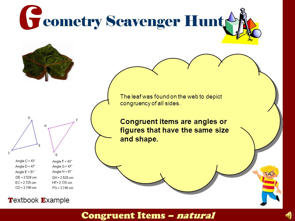 Congruent Items – natural