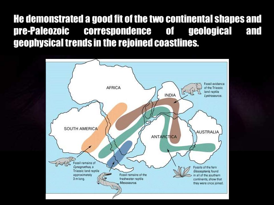 He demonstrated a good fit of the two continental shapes and pre-Paleozoic correspondence of geological and geophysical trends in the rejoined coastlines.