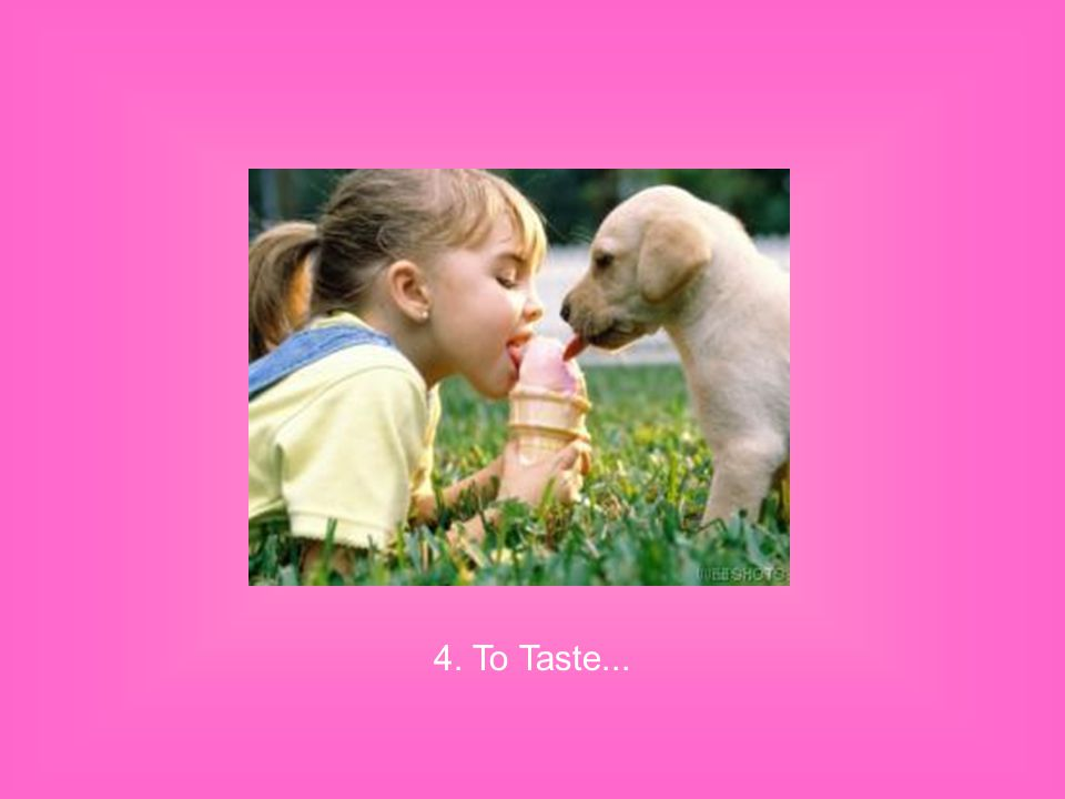 4. To Taste...