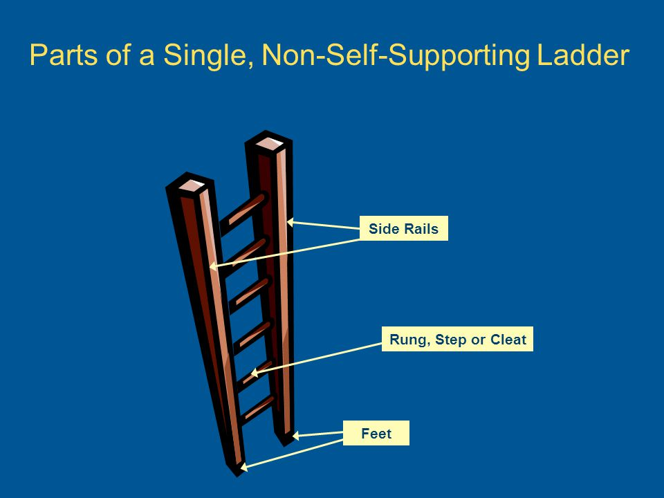 Parts of a Single, Non-Self-Supporting Ladder