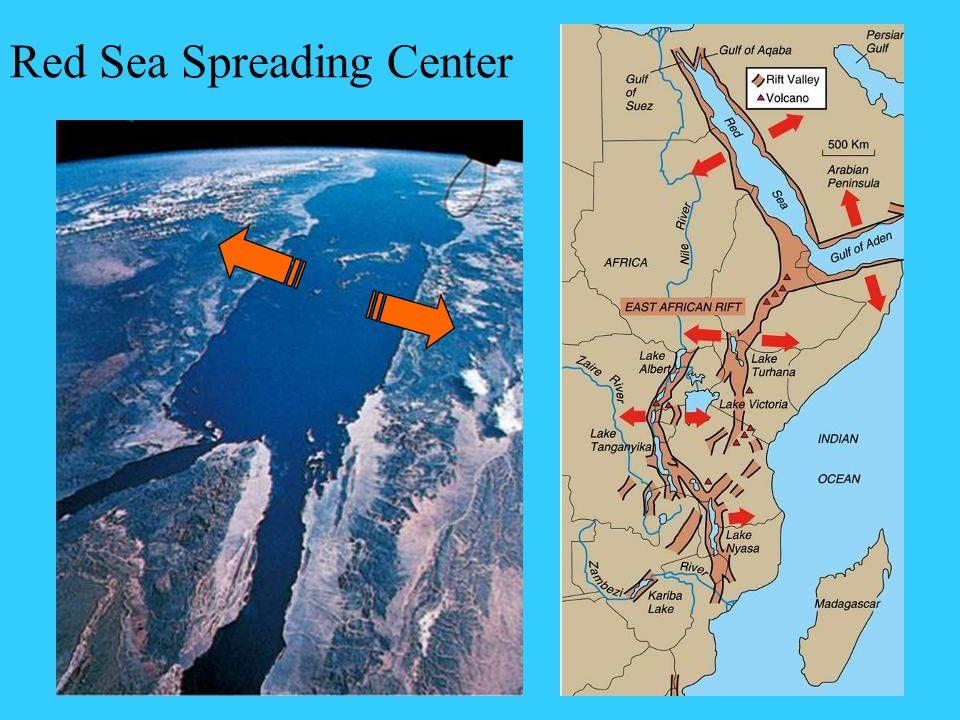 Red Sea Spreading Center