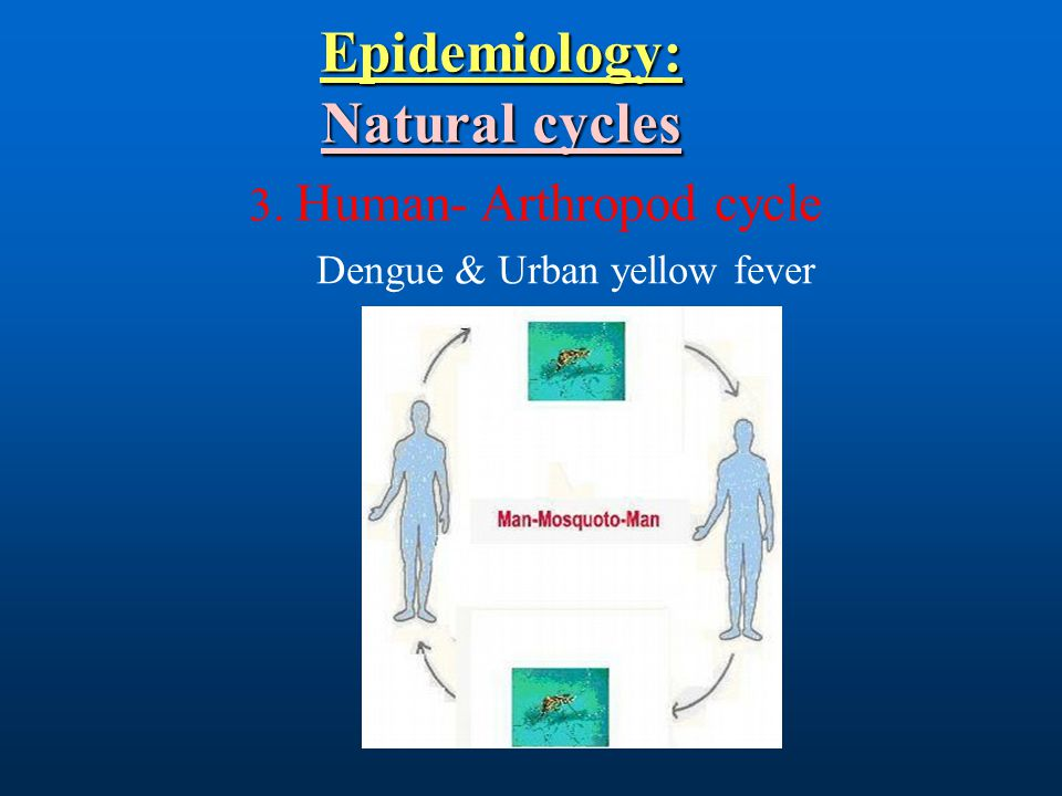 Epidemiology: Natural cycles