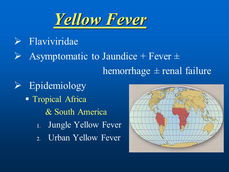 Yellow Fever Flaviviridae Asymptomatic to Jaundice + Fever ±