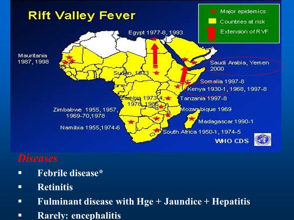 Diseases Febrile disease* Retinitis