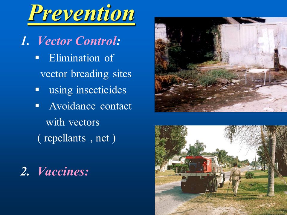 Prevention Vector Control: Vaccines: Elimination of