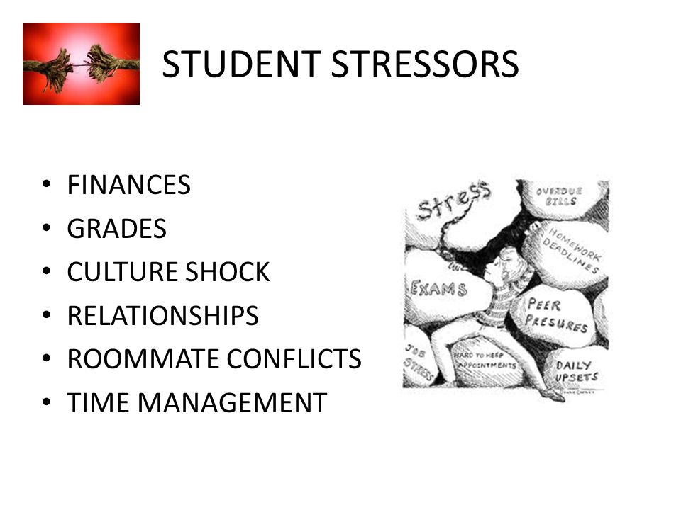 STUDENT STRESSORS FINANCES GRADES CULTURE SHOCK RELATIONSHIPS