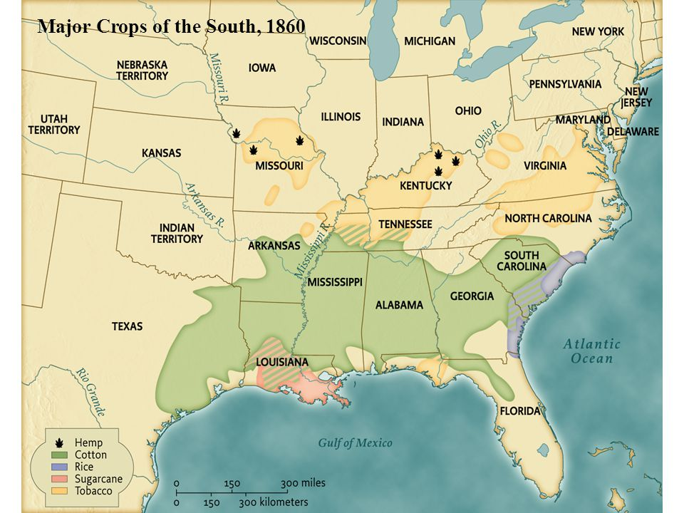 Major Crops of the South, 1860 • pg. 407