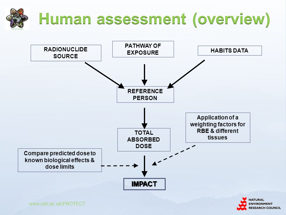 Human assessment (overview)