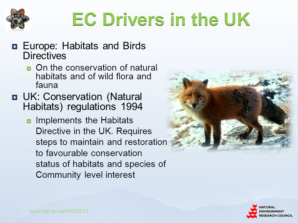 EC Drivers in the UK Europe: Habitats and Birds Directives