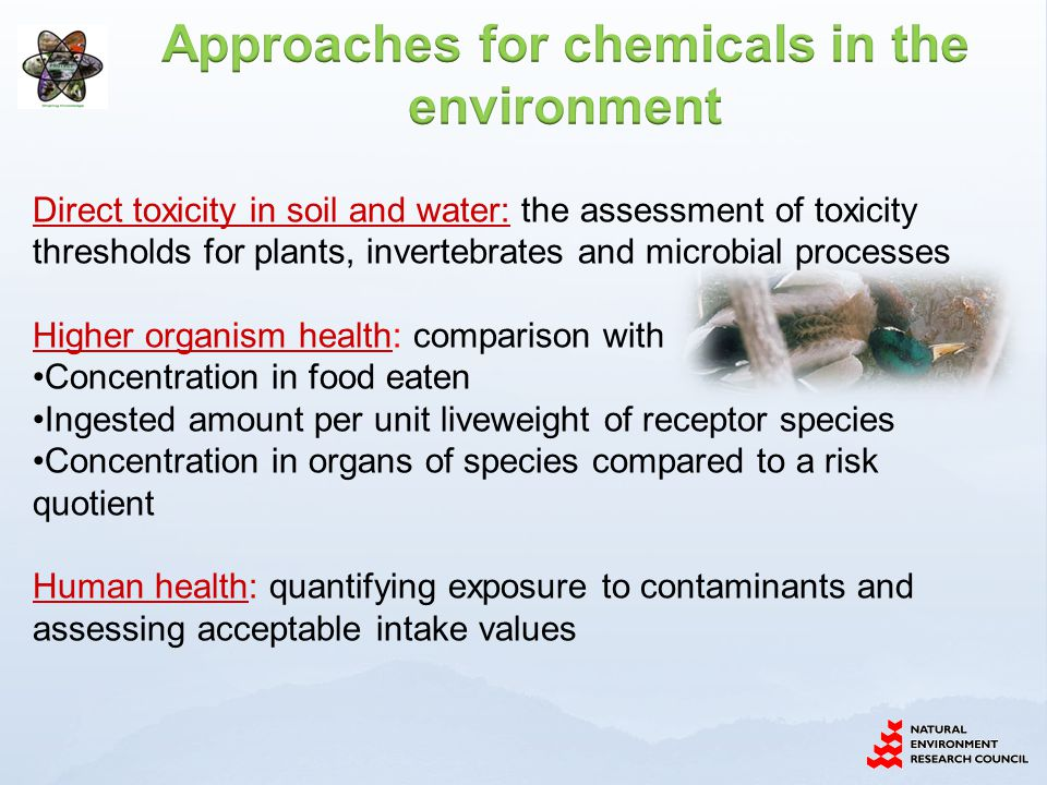 Approaches for chemicals in the environment
