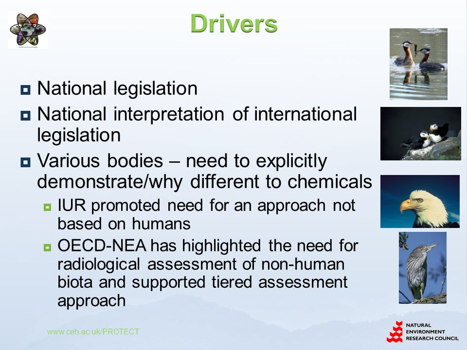 Drivers National legislation