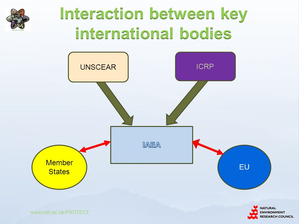 Interaction between key international bodies
