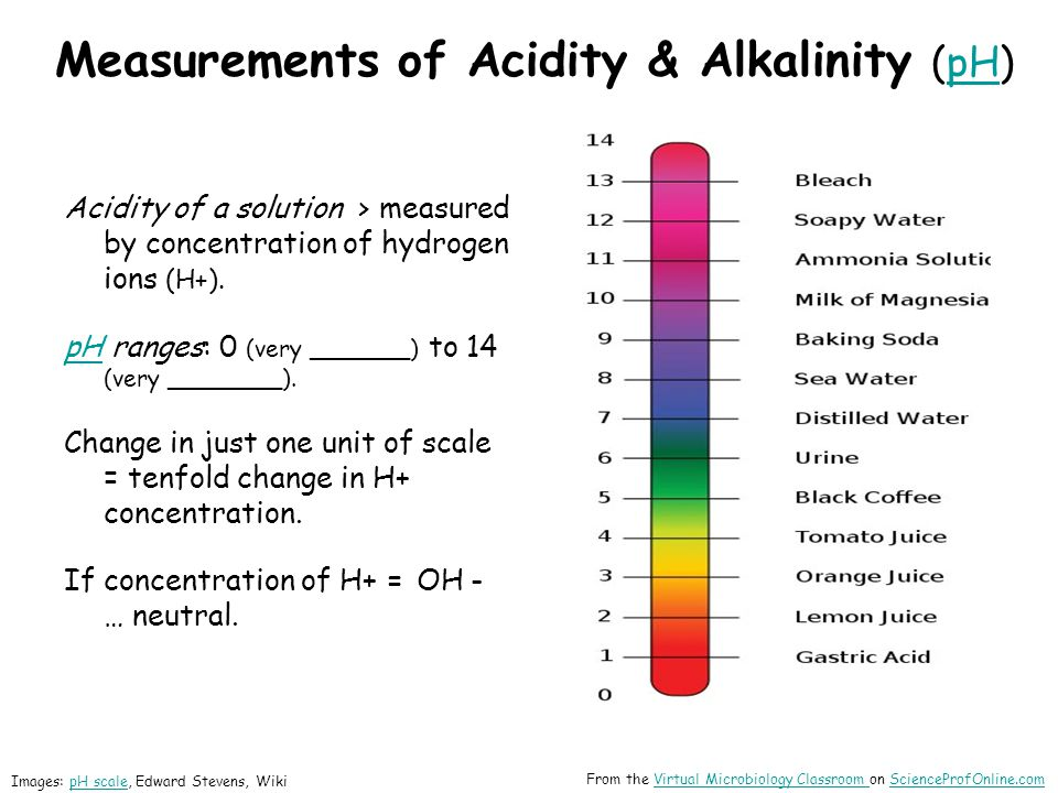 Measurements of Acidity & Alkalinity (pH)