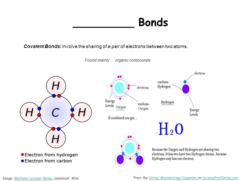 _________ Bonds Covalent Bonds: Involve the sharing of a pair of electrons between two atoms. Found mainly … organic compounds.