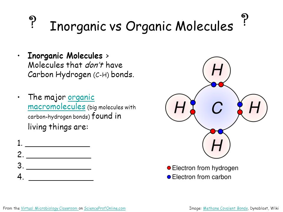 Inorganic vs Organic Molecules