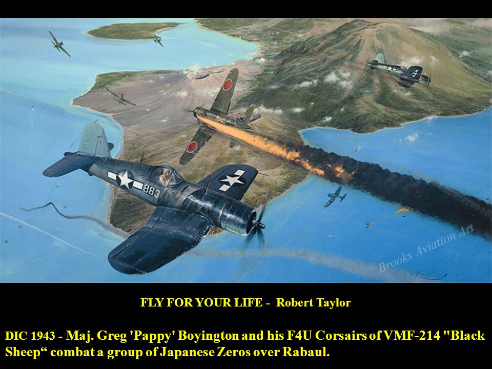 FLY FOR YOUR LIFE - Robert Taylor