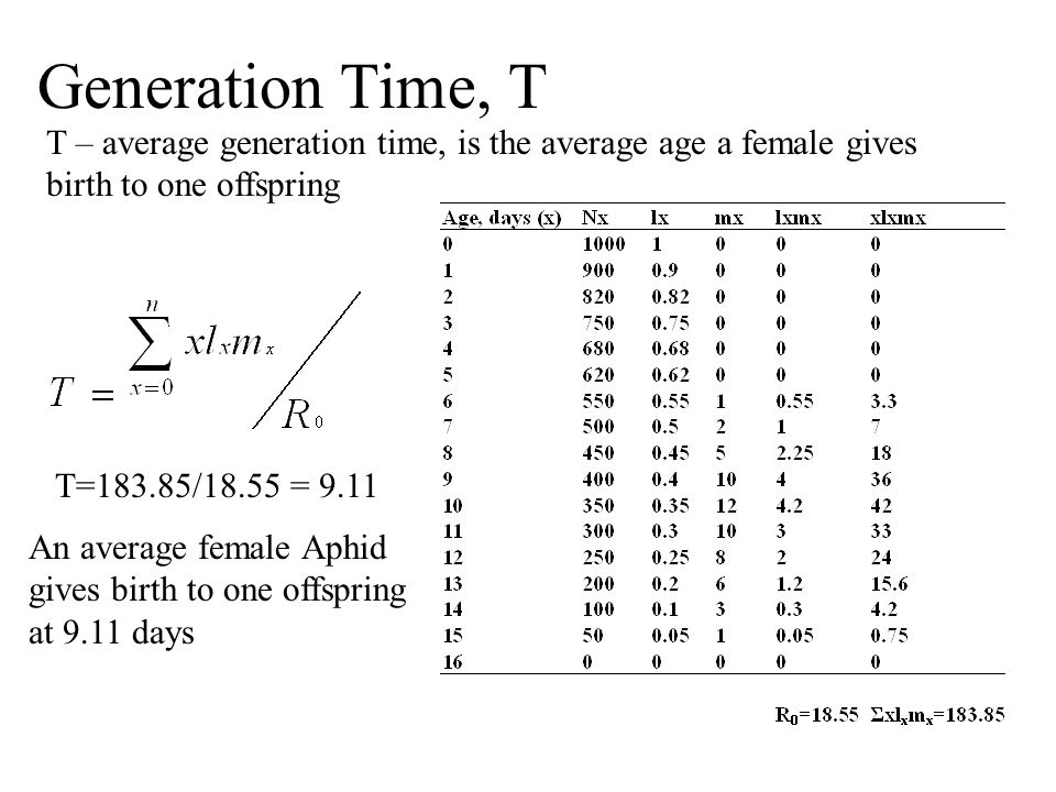 Generation Time, T T – average generation time, is the average age a female gives birth to one offspring.
