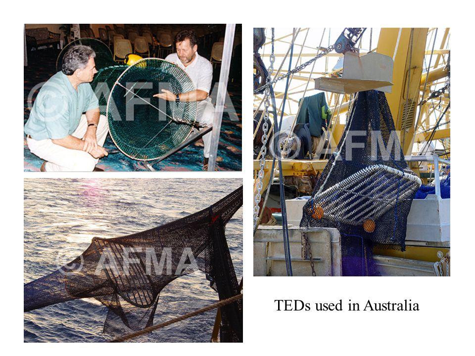TEDs used in Australia