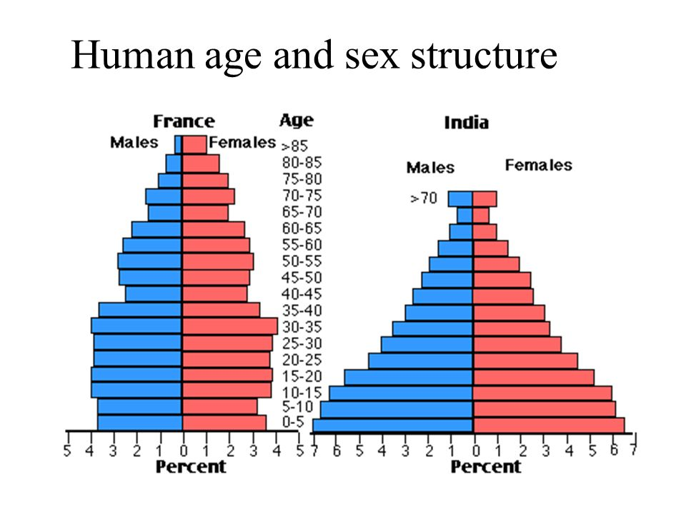 Human age and sex structure