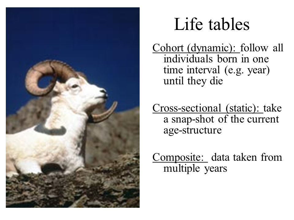 Life tables Cohort (dynamic): follow all individuals born in one time interval (e.g. year) until they die.
