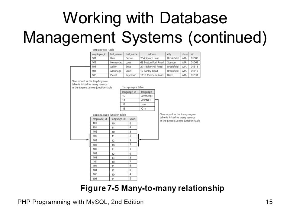 Working with Database Management Systems (continued)