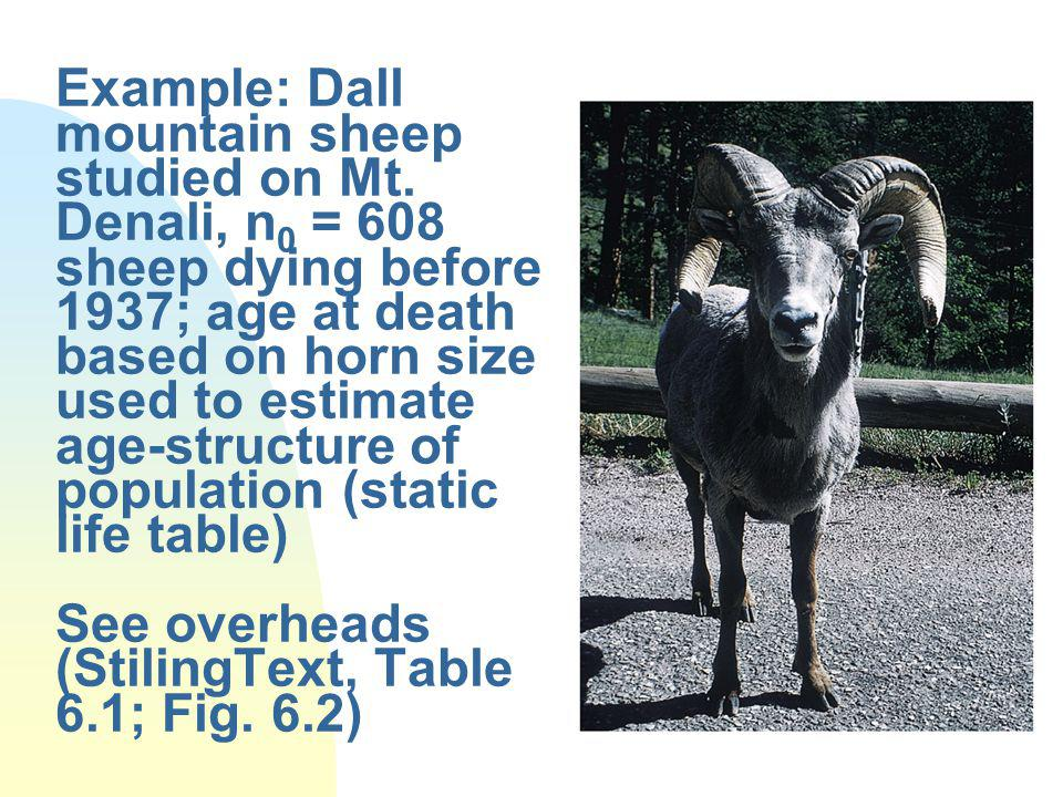 Example: Dall mountain sheep studied on Mt