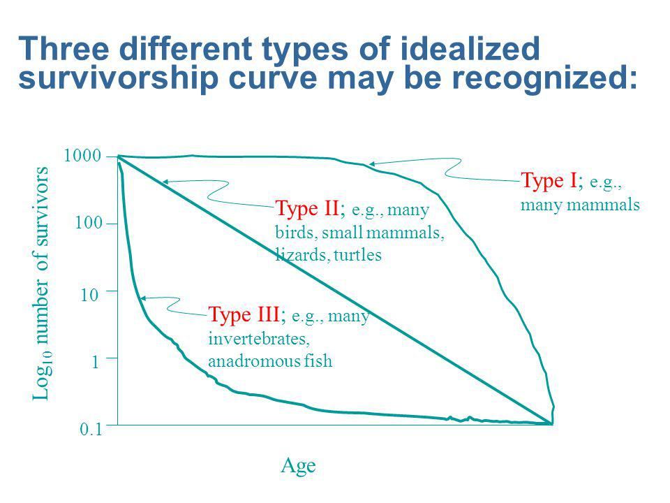 Three different types of idealized survivorship curve may be recognized: